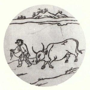 第5図.牧牛(牛を飼いならす)